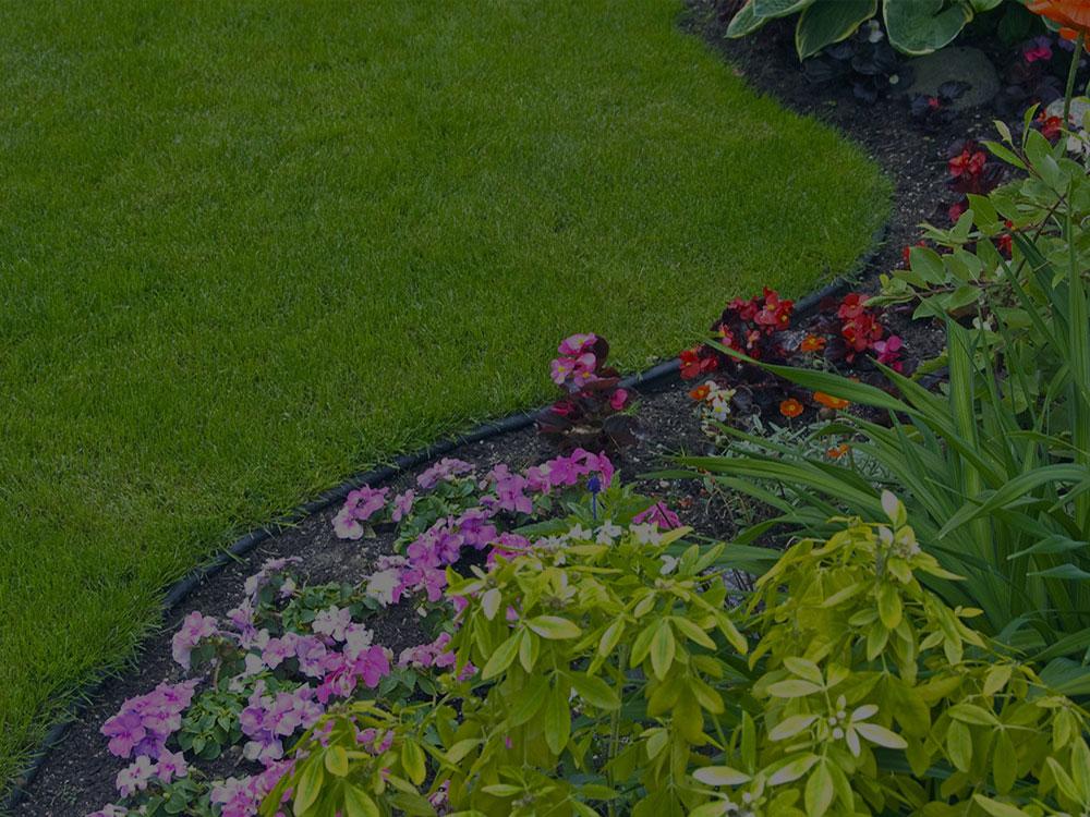 Bismarck Garden Design